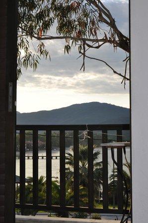 Hotel Liotopi: Eucalyptus