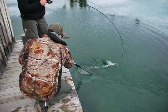 Angler's Advantage @ Fish Denali