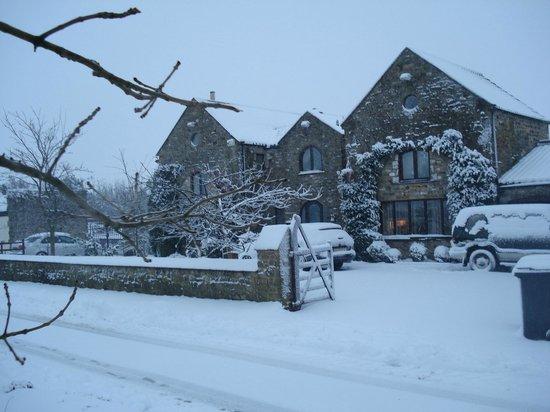 Ewden House: Winter beaks