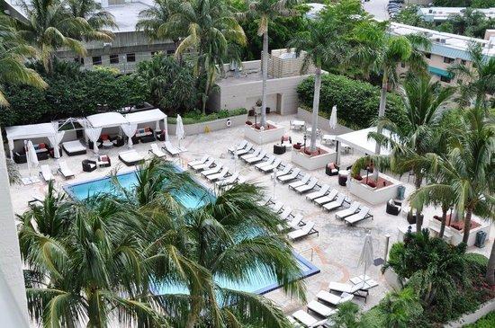 The Ritz-Carlton Coconut Grove, Miami: View of Ritz Carlton Coconut Grove Pool