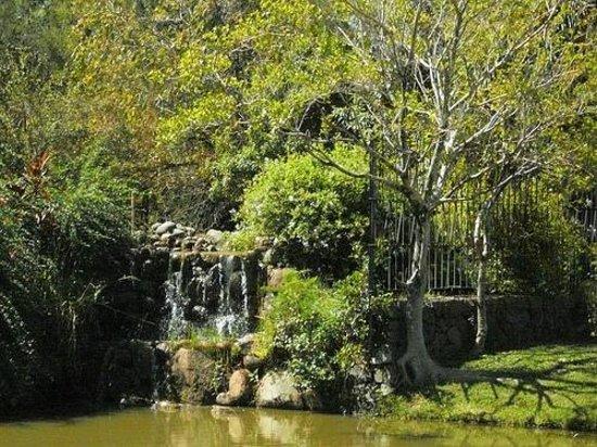 Parque Moinhos de Vento (Parcão): Moinhos de Vento Park