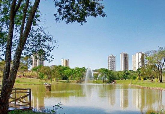 Parque Flamboyant: Flamboyant Park
