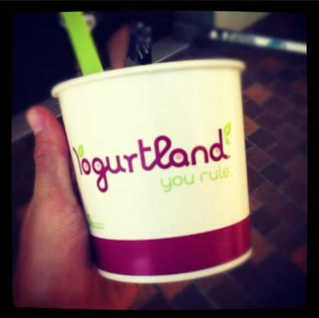 Yogurtland Waikiki Beach: YogurtLand you really do RULE!