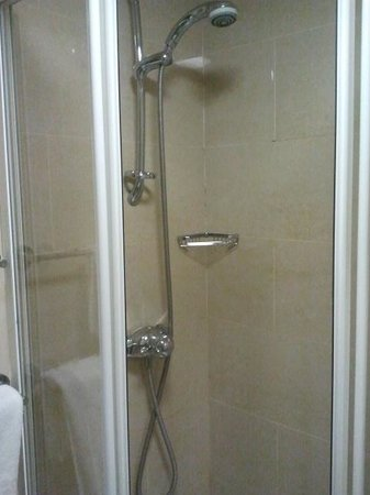 Blooms Hotel : toilet