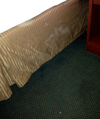 Quality Inn: stains on the bedskirt. Pictures dont do it justice