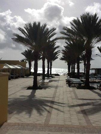 The Westin Dawn Beach Resort & Spa, St. Maarten: Sunrise