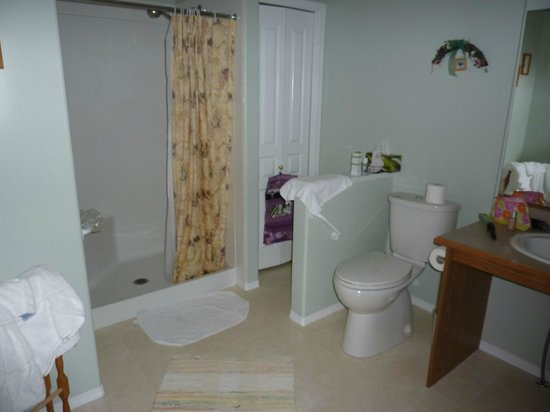Off Our Rockies Bed and Breakfast : Shower room