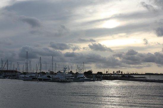 Fisherman's Wharf: Marina