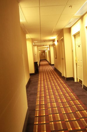 Comfort Suites : hallway