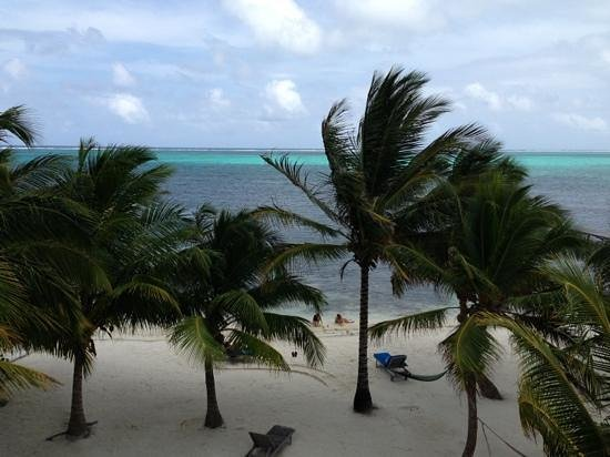 Sunset Beach Resort: View from Sunset Beach Resort C3