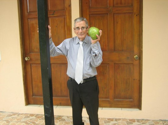 Mapi's Cabins: Sour Sop/Guanabana on the property