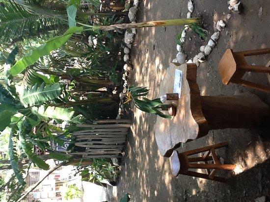 Casa del mar empanadas: Jardin