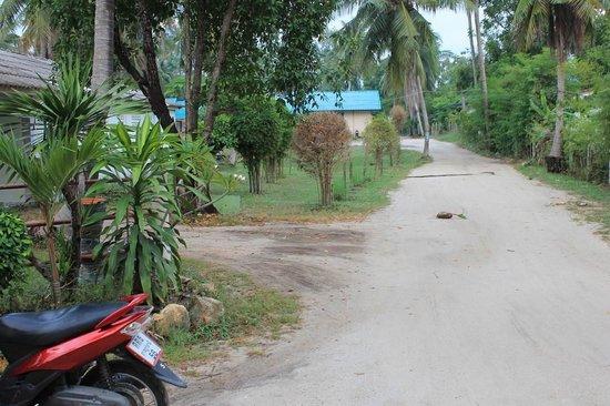 Phangan Great Bay Resort: дорога к отелю