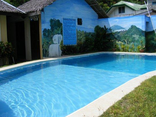 Blue Ribbon Dive Resort: Pool