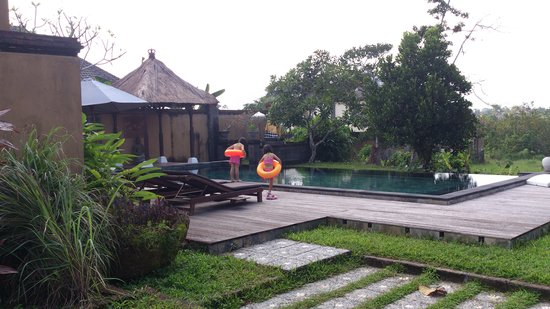 Villa Mimpi Manis Bali : The infinity pool.
