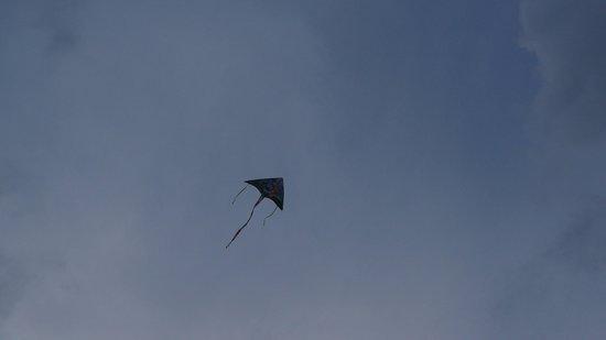 สวิสการ์เดน บีช รีสอร์ท กวนตัน: Our kite