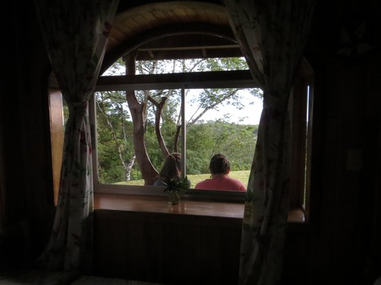 Cabinas Capulin: view from inside