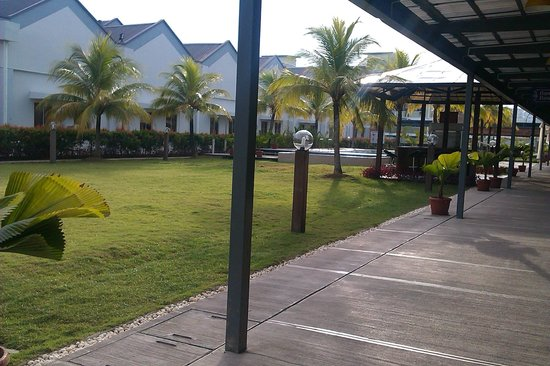 Borneo Cove Hotel: outside