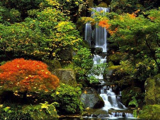 Parque Washington: Washington Park