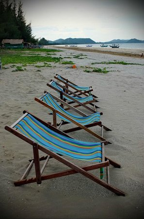Dolphin Bay Resort: beach area .. .cosy but not exactly sandy white