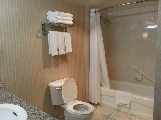 Holiday Inn Express Calgary: inside the bathroom