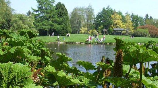 Arboretum John F. Kennedy : John F. Kennedy Arboretum, County Wexford