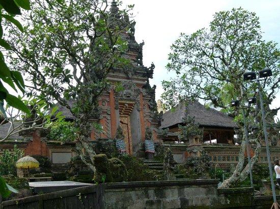 Saraswati Temple: Temple gate and frangipani