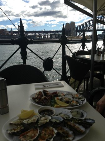 Sydney Cove Oyster Bar: Oysters with a view