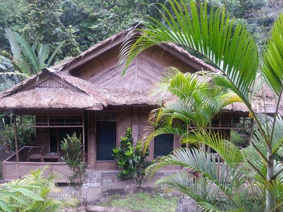 Tangkoko Dove Villas: Cottage