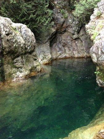 Lynn Canyon Park: Lindo!