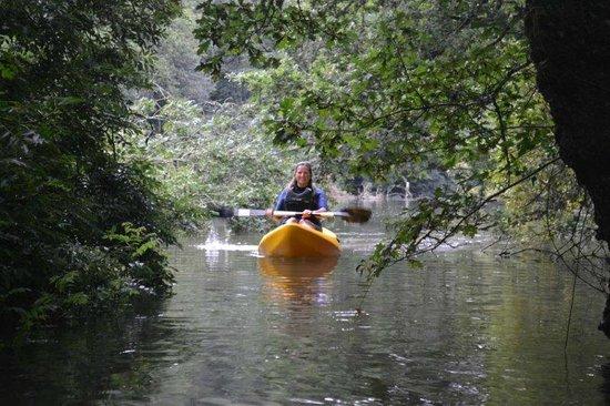 Helford, UK: Kayaking with Koru