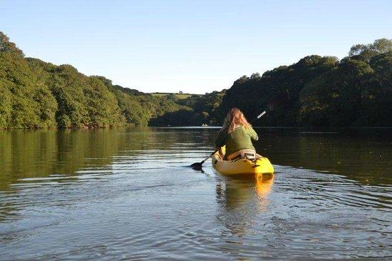Helford, UK: Stunning Frenchmans Creek