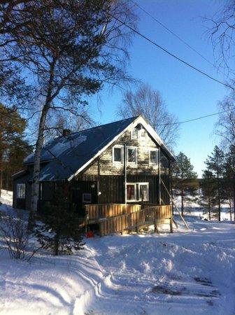 BIRK Husky Accommodation B&B & cabins: Winter view