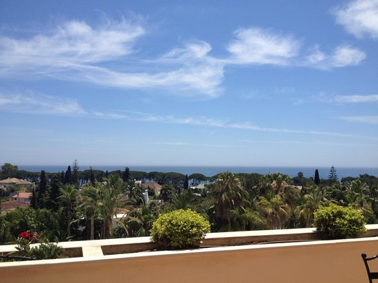 Guadalpin Suites: View from balcony