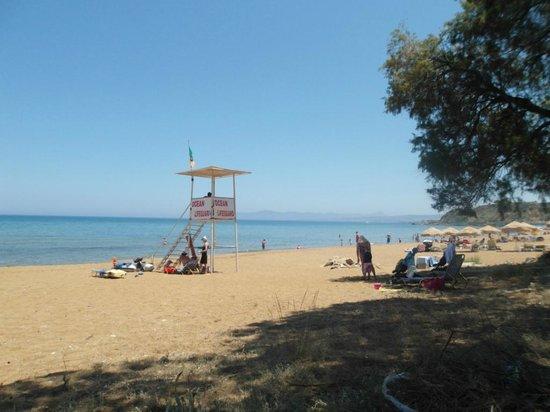 Alkion Hotel: La spiaggia a 50 metri dall'Hotel