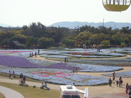 Fukuoka, Japón: Flowers, flowers everywhere!