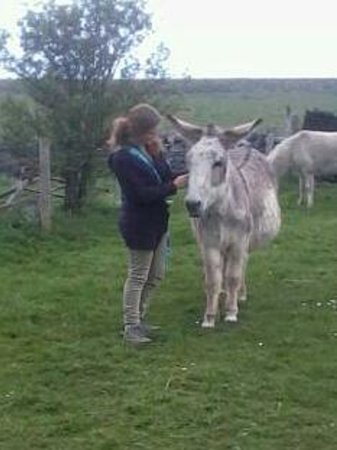 Peak Forest, UK: kirsten and her new donkey friend