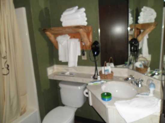 Stoney Creek Hotel & Conference Center - Moline : Bagno