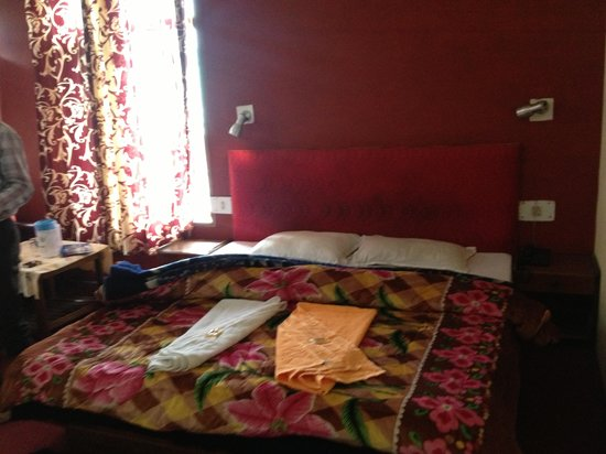 Hotel Drilbu Manali: Rooms