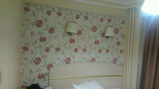 Hotel Akcinar : خلفية الغرفة