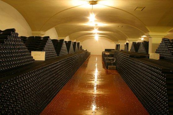 Emidio Pepe Country House: la cantina storica con 350.000 bottiglie in invecchiamento