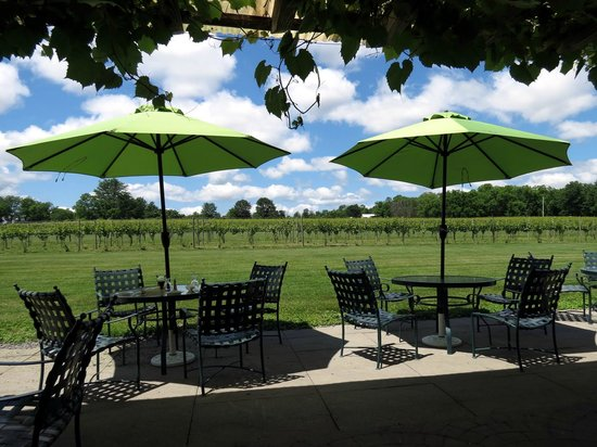 Knapp Winery & Vineyard Restaurant: View from patio