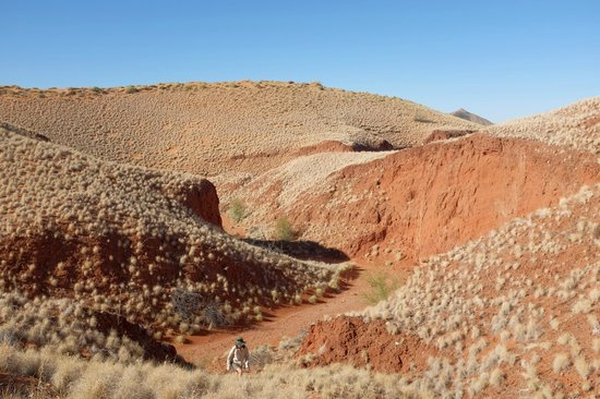 hiking trail at Tsondab Valley Scenic Reserve