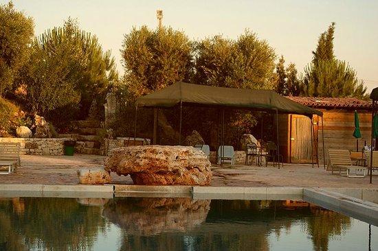Villa Castelli, Italie : Piscina con masso-trampolino