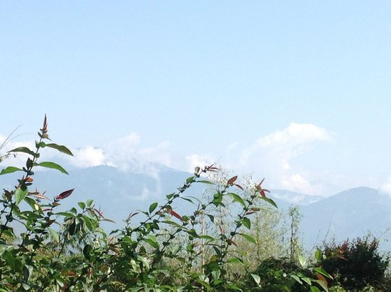 Mayfair Himalayan Spa Resort: View from Garden in morning