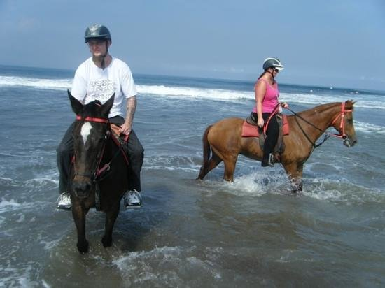 A personal experience with riding a horse