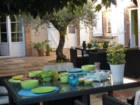 Villa des Violettes : petit déjeuner sous les muriers platanes