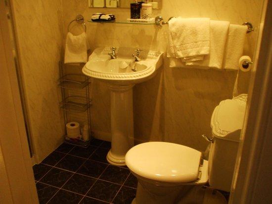 Aaran Lodge: La salle de bain avec douche
