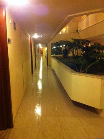 Tropic Garden Aparthotel: Ground Floor