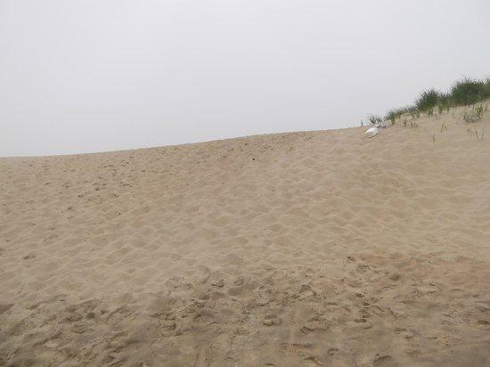 South Beach: walk to the beach